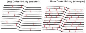 Less Cross-linking (weaker) vs More Cross-linking (stronger)